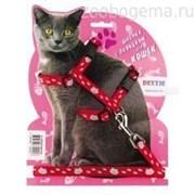 Комплект для крупных кошек красный