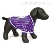 Футболка Dezzie для собак , 30 см (футбол) фиолетовый