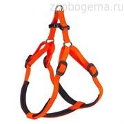 Шлейка DAYTONA P SMALL (оранжевая)