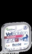 Monge VetSolution Cat Recovery влажная диета для кошек Рекавери 100 г
