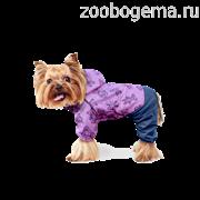 """Дождевик """"Тедди"""" р-р XL"""