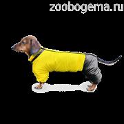 ZOOTREND Дождевик для таксы Желтый